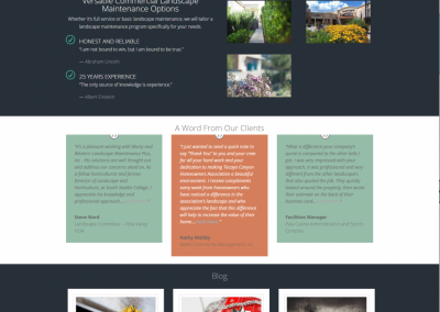Website Design Orange County WLM